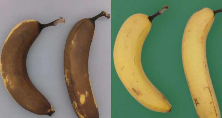 蔬果保存期限太短怎麼辦?印度竟想了這個超新奇方法減少浪費食物