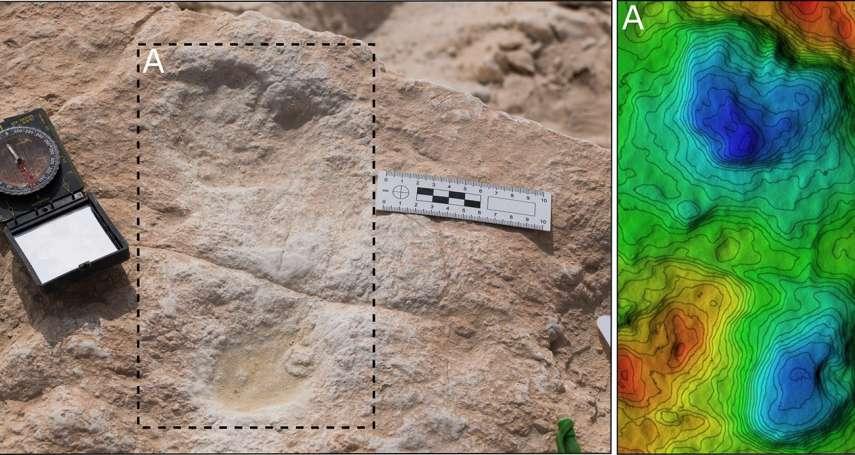 最早踏入阿拉伯半島的人類腳印!7個智人漫步足跡,為人類遷徙帶來新發現