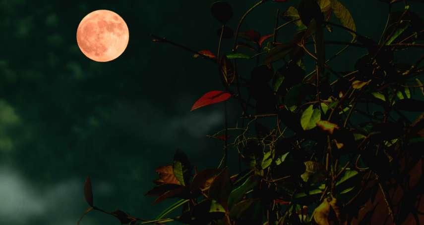 賞月、柚子的英語怎麼說?2分鐘學會用英文介紹中秋節