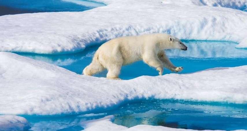 研究:塑膠微粒污染已遍及全球,連最偏遠的北極海域也無法倖免