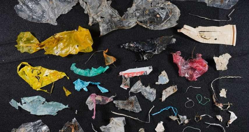 塑膠、鋁罐都流入大海!淡水河口海底垃圾量 竟超全球平均近90倍