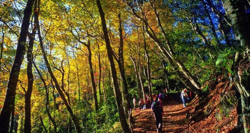 【2020新竹登山步道】此生必訪的國家級步道!霞喀羅古道3大絕美景點一次全公開