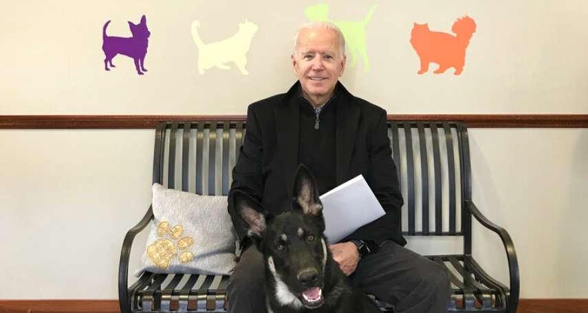 拜登愛犬白宮咬傷人!美國「第一狗狗」被送回老家
