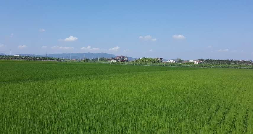 杜宇觀點:農業起風台灣站上風口了嗎?