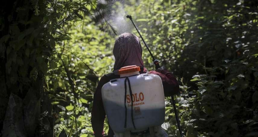樹林裡的女性地獄3》搬重物搬到子宮脫垂、農藥傷害生育能力!棕櫚油女工拿命換低薪