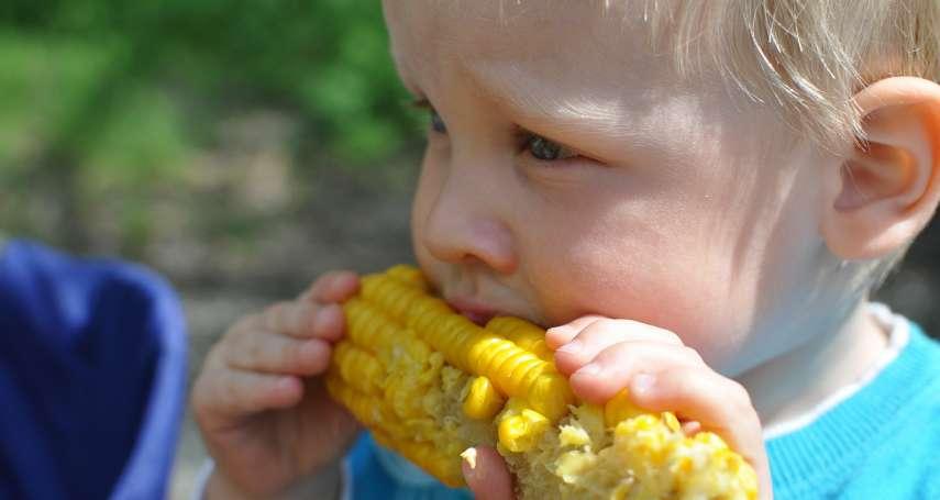 聯合國糧農組織:全球糧價11月大漲 創6年新高