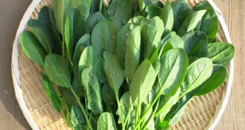 吃「深綠色蔬菜」恐傷腎?食藥署出面揭真相