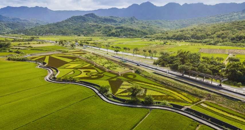 縱谷彩稻藝術季-豐收採稻園遊會 一月九號邀您來「抱稻」!