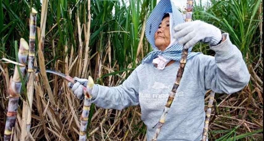 沖繩台灣女工記事