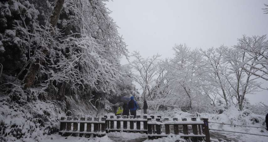 下雪了!低溫急凍 太平山、七星山、尖石鄉雪景一次看
