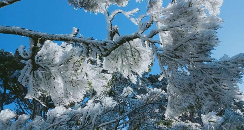 連屏東都好冷!北大武山出現超美「霧淞」