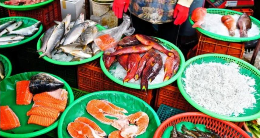 魚眼清澈≠新鮮!海鮮專家簡單3步驟,教你挑出尚青的魚