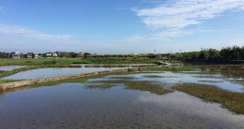 228連假東北季風南下,水氣大增!吳德榮:北台灣天氣多變,到這天才會轉晴回溫