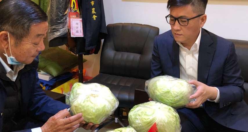 吃鳳梨、買高麗菜挺農民!鄭宏輝與新竹市農會推團購高麗菜