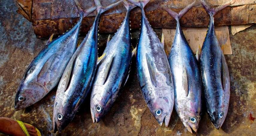 團結救鮪魚!太平洋貧窮小島國靠這招收服外國船隊 發大財又兼顧保育的永續漁業成功故事
