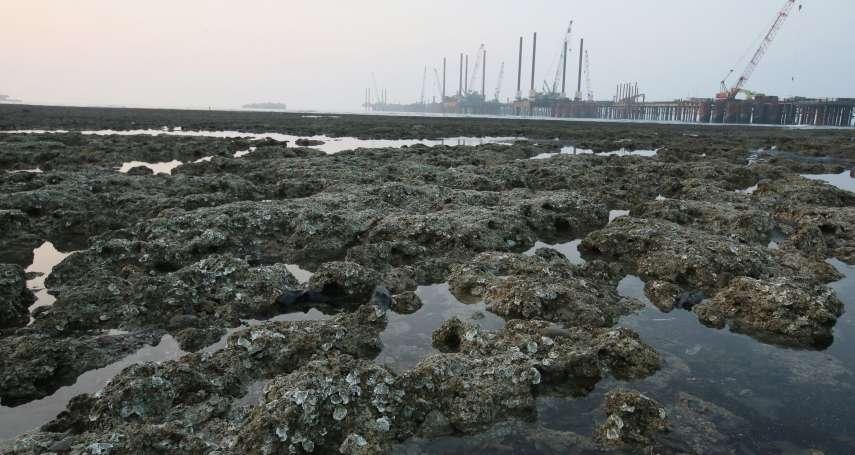 藻礁是「海水重污染指標」?事實查核中心出面狠打臉