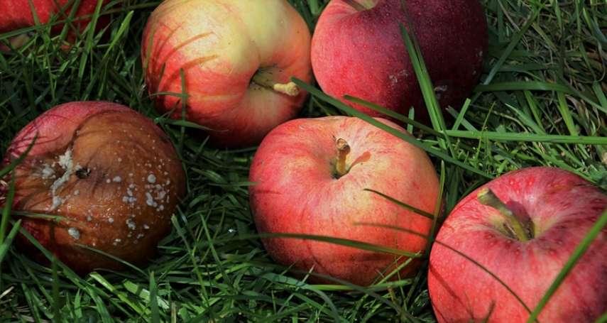 水果只爛一小塊,可以削掉繼續吃嗎?醫師道出致命關鍵,貪小便宜恐付出慘痛代價
