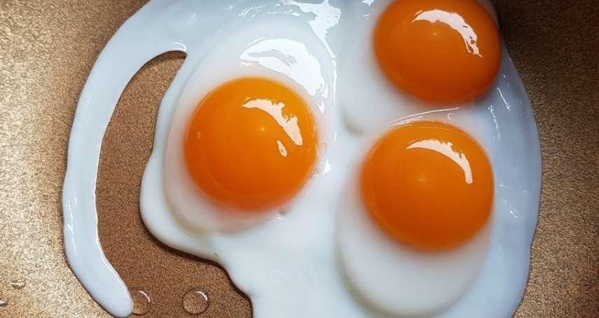 一天最多可以吃幾顆蛋?營養師破解多數人的迷思,原來大家一直以來都搞錯重點了