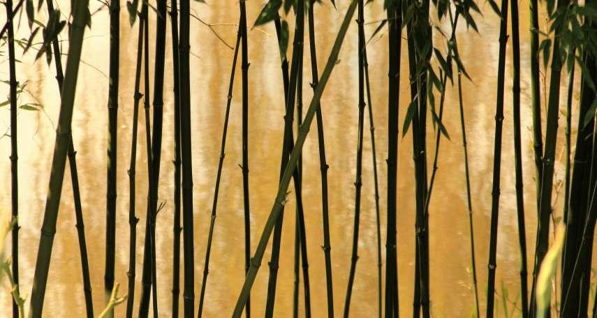 洪三雄專欄:鐵筆淡描竹刻如畫,合南北宗為一體
