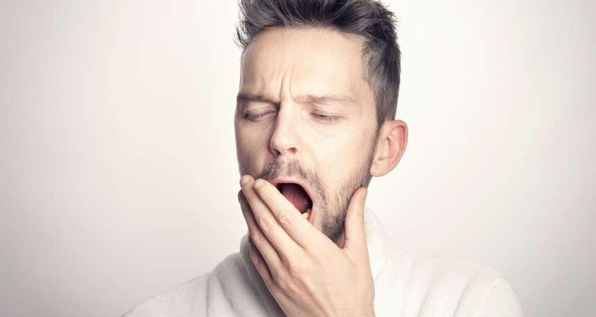 300字讀電子報》「只有大腦感覺是安全的,才能入睡!」這些助眠方法出乎意料簡單,但真的有效!