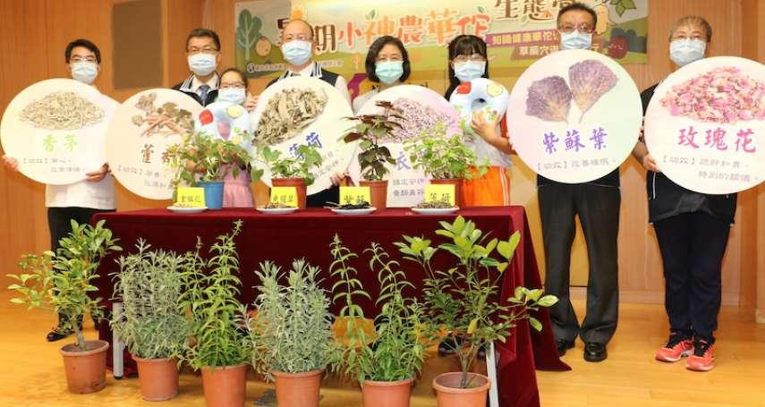 「小神農華佗生態營」免費活動 5月24日開放網路報名