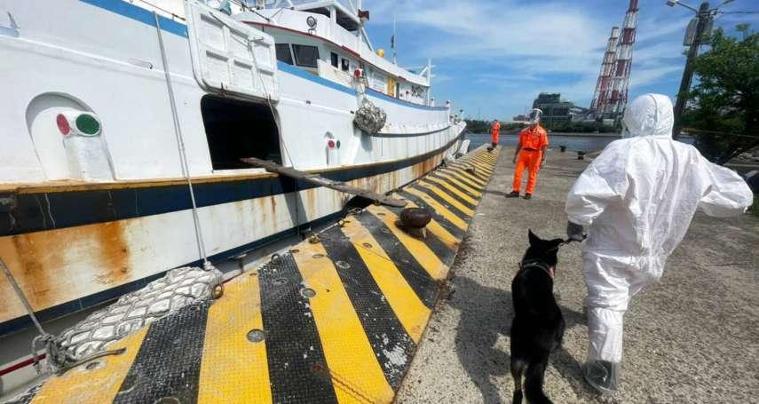 海巡犬意外活逮偷渡橘貓 超靈敏嗅覺還揪出25公斤冷凍鮑魚