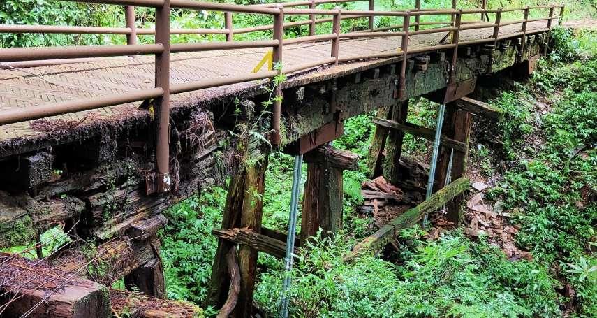 登山注意!阿里山特富野步道橋梁劣化 8月中起封閉整修1年