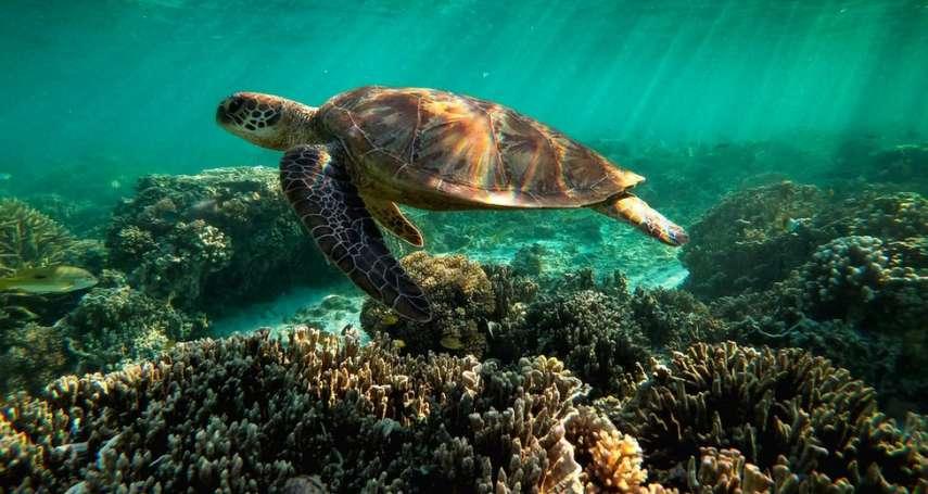 名列世界遺產40年,澳洲大堡礁面臨世遺「降級」危機