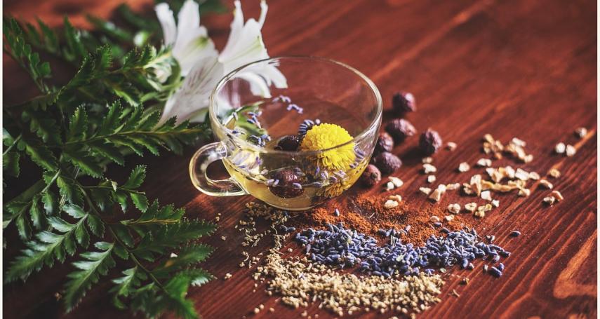 多吃「苦」竟然可以活化免疫力?苦味食材的 4 大好處