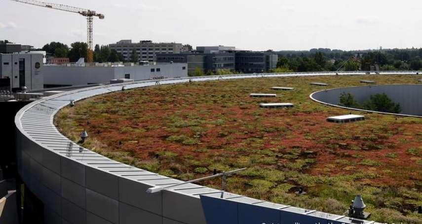 極端氣候下的德國都市規劃:柏林立志打造「海綿城市」,「綠色屋頂」仍有待推廣