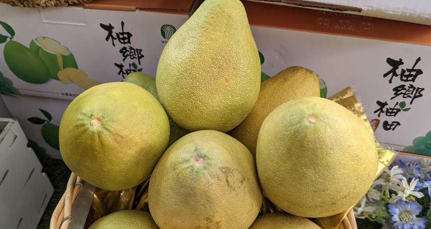 柚子控必看!專家親授3大剝柚絕招,「不留苦味」輕鬆取下整顆果肉