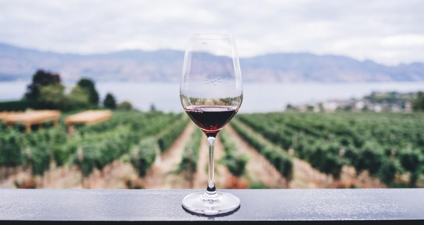 品酒,就是在尋找「此生難忘的味道」:大收藏家陳泰銘的3則酒食哲學